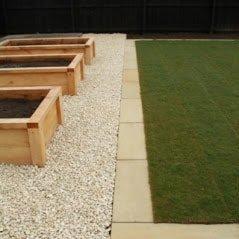 Landscape Plantar Path